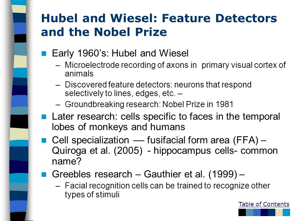 Table of Contents Hubel and Wiesel: Feature Detectors and the Nobel Prize Early 1960's: Hubel and Wiesel –Microelectrode recording of axons in primary visual cortex of animals –Discovered feature detectors: neurons that respond selectively to lines, edges, etc.
