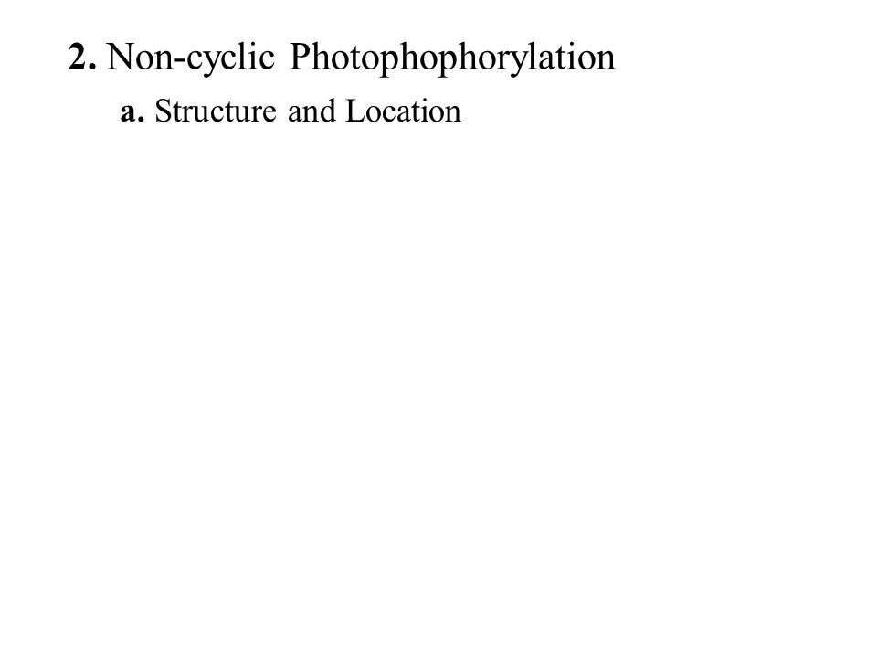 a. Structure and Location 2. Non-cyclic Photophophorylation