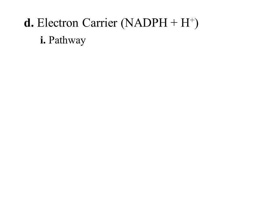 i. Pathway d. Electron Carrier (NADPH + H + )
