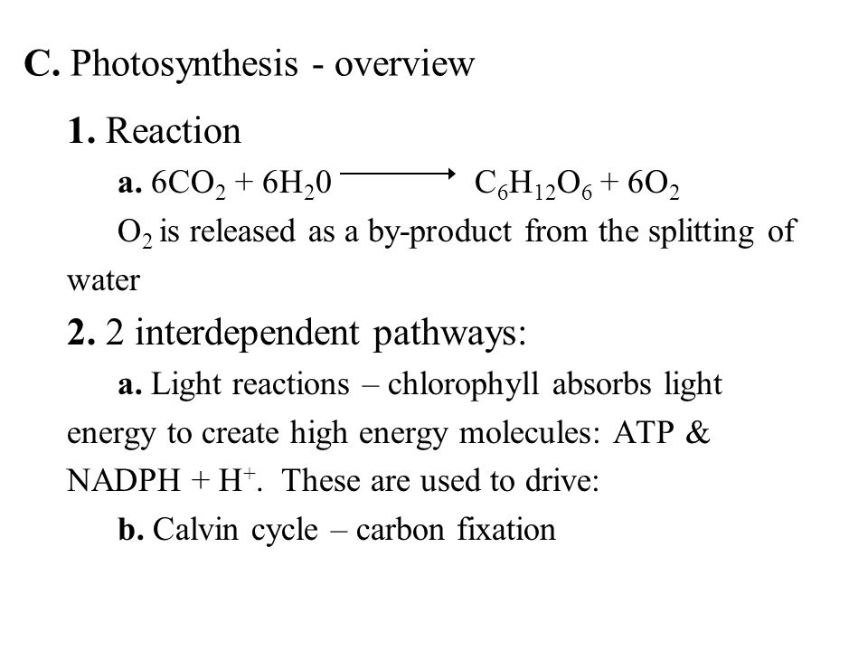 1. Reaction a.