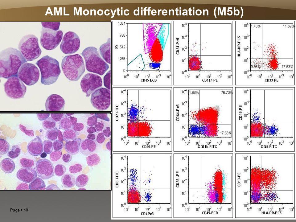 Page  40 AML Monocytic differentiation (M5b)