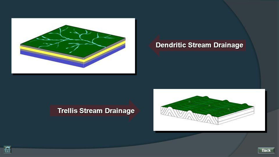 Dendritic Stream Drainage Trellis Stream Drainage Back