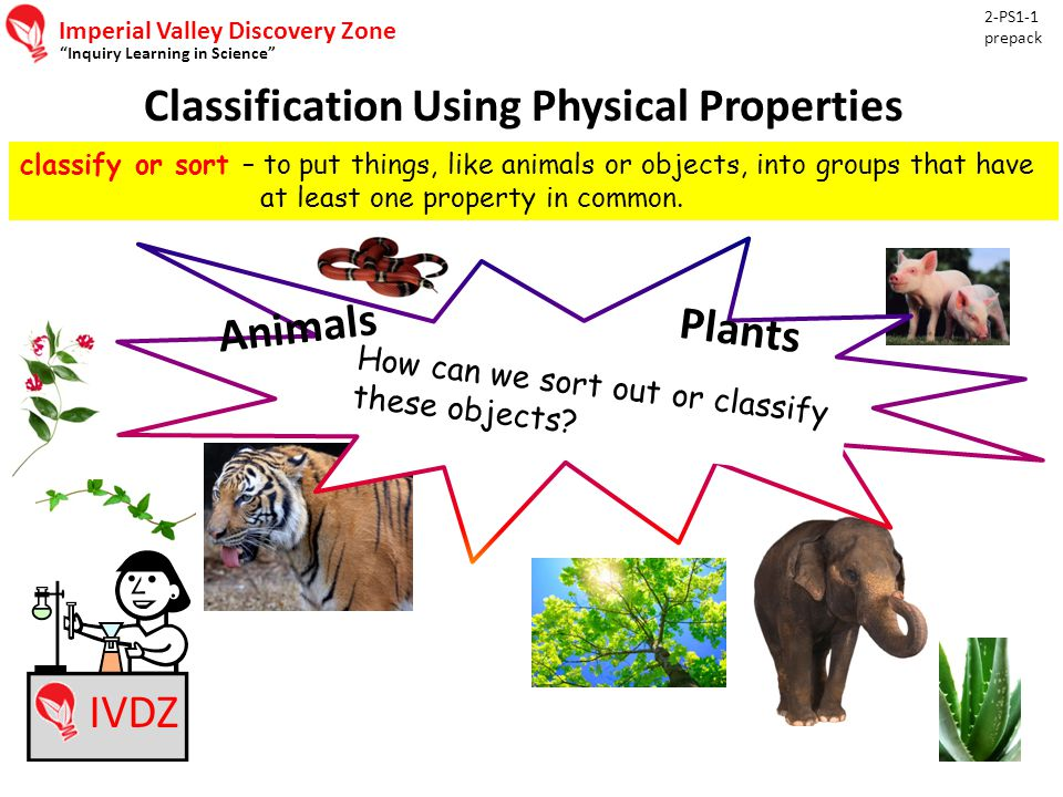 Imperial Valley Discovery Zone Inquiry Learning in Science Classification Using Physical Properties 2-PS1-1 prepack IVDZ classify or sort – to put things, like animals or objects, into groups that have at least one property in common.