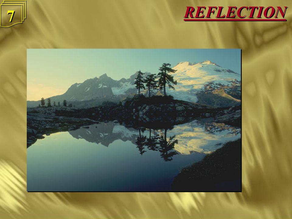 REFLECTION 7 7