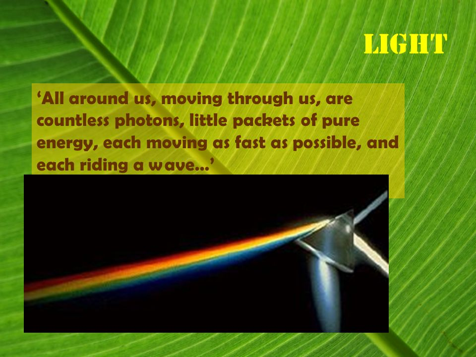 Light 'All around us, moving through us, are countless photons, little packets of pure energy, each moving as fast as possible, and each riding a wave…'