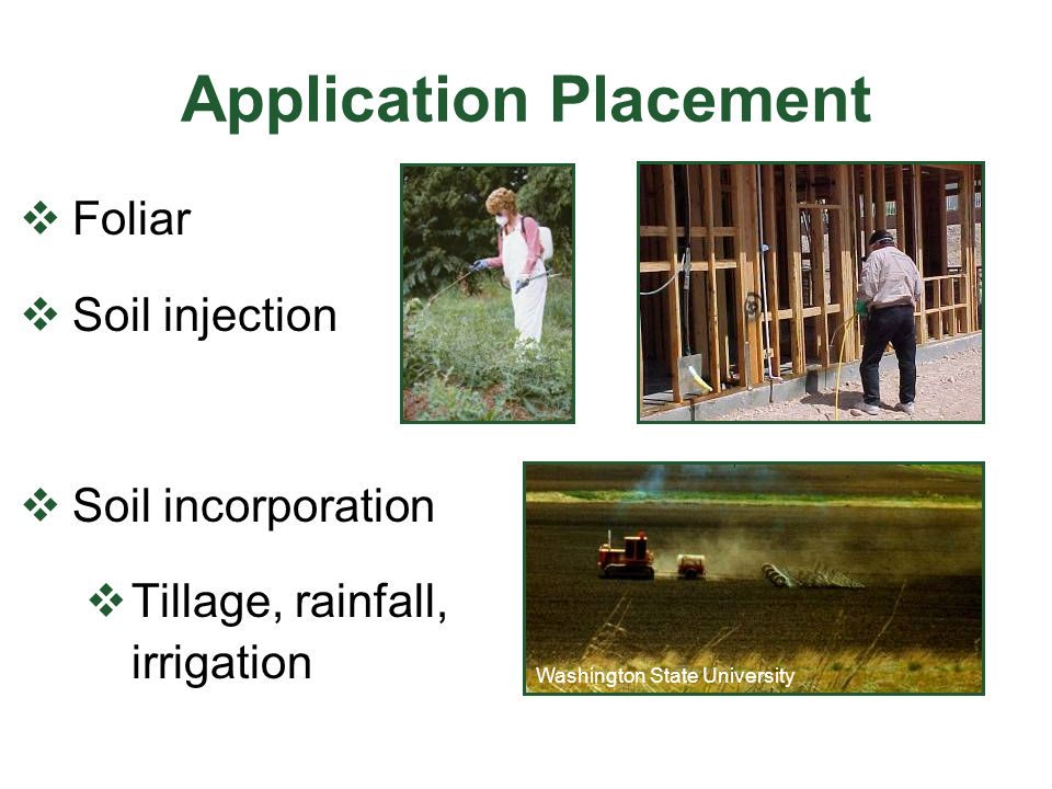 Application Placement  Foliar  Soil injection  Soil incorporation  Tillage, rainfall, irrigation Washington State University