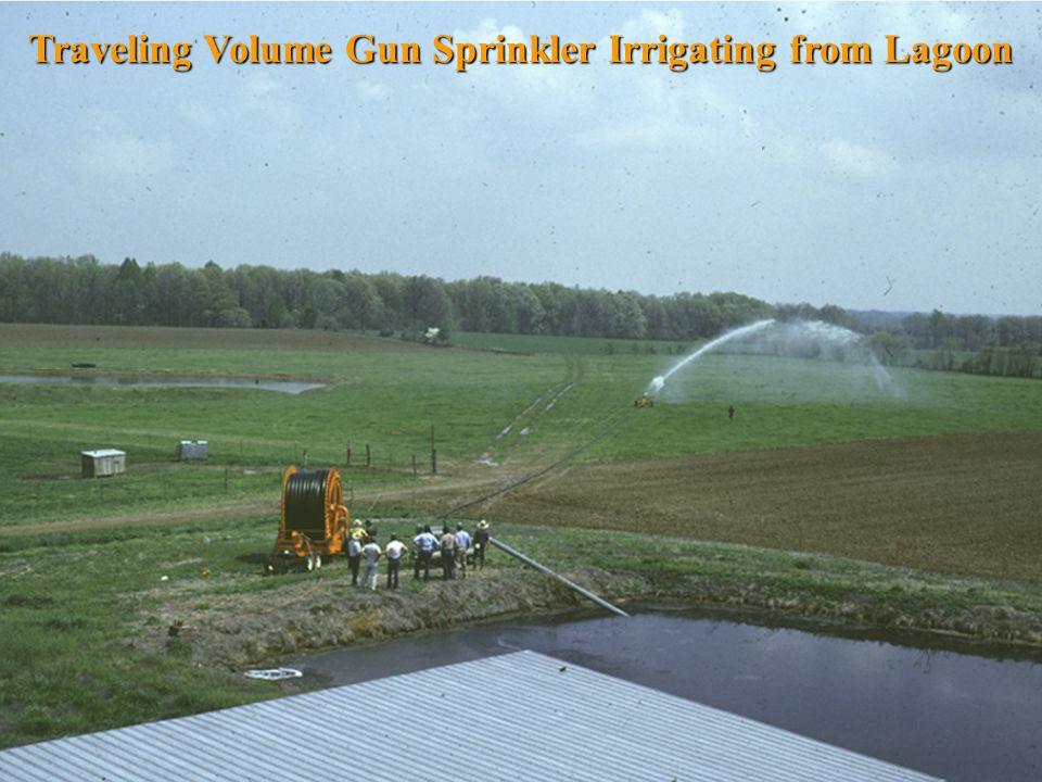 Traveling Volume Gun Sprinkler Irrigating from Lagoon