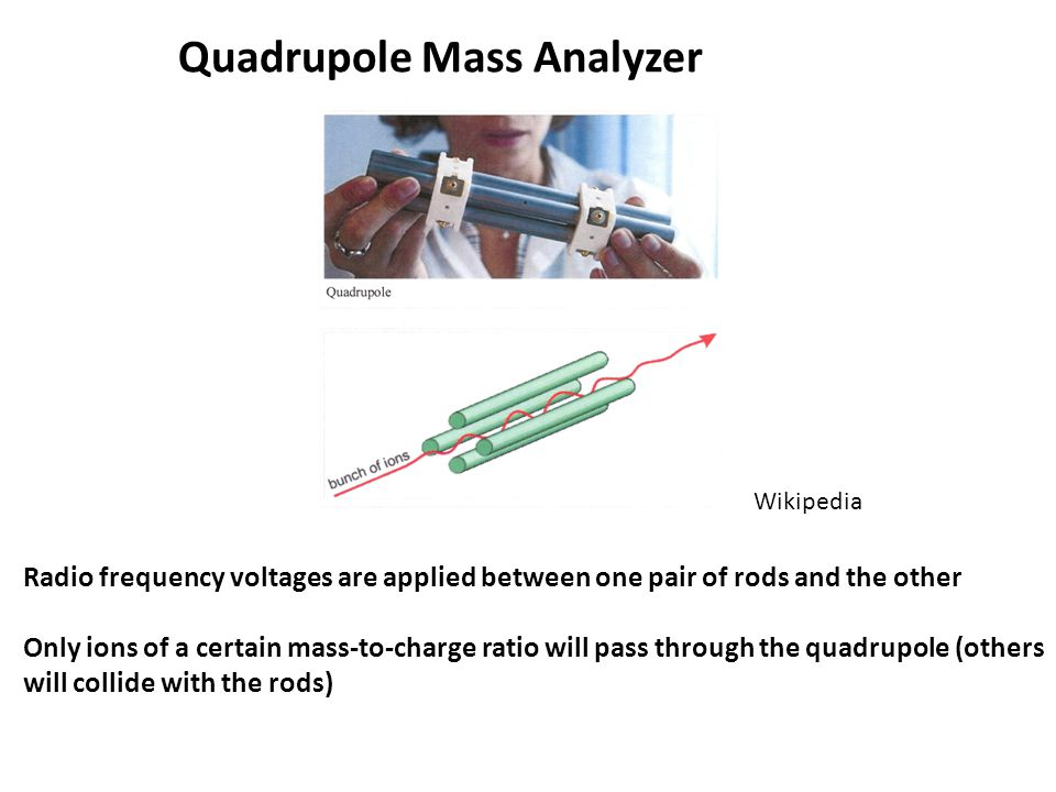 Quadrupole Mass Analyzer Wikipedia Radio frequency voltages are applied between one pair of rods and the other Only ions of a certain mass-to-charge ratio will pass through the quadrupole (others will collide with the rods)