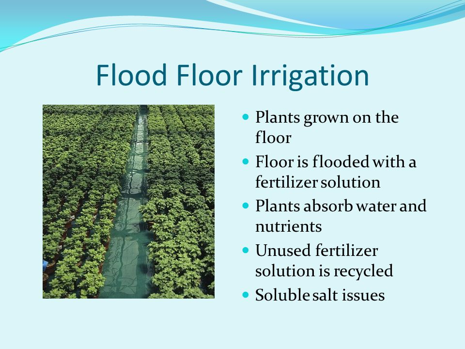 Flood Floor Irrigation Plants grown on the floor Floor is flooded with a fertilizer solution Plants absorb water and nutrients Unused fertilizer solut