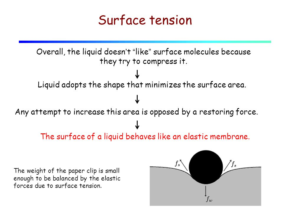 Surface tension Overall, the liquid doesn't like surface molecules because they try to compress it.