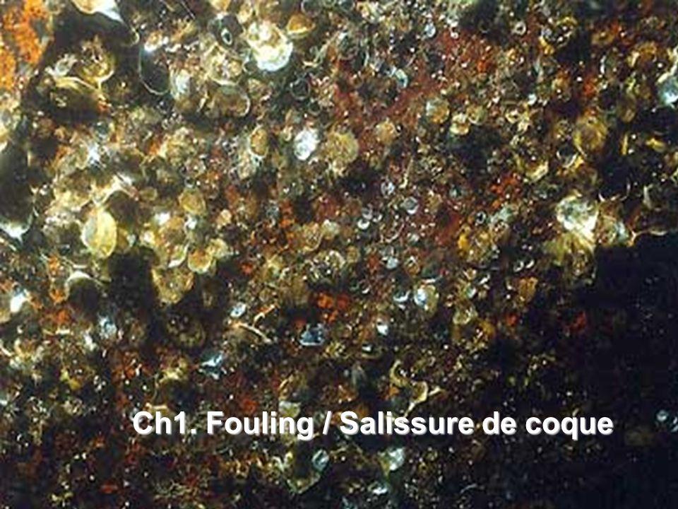 Ch1. Fouling / Salissure de coque