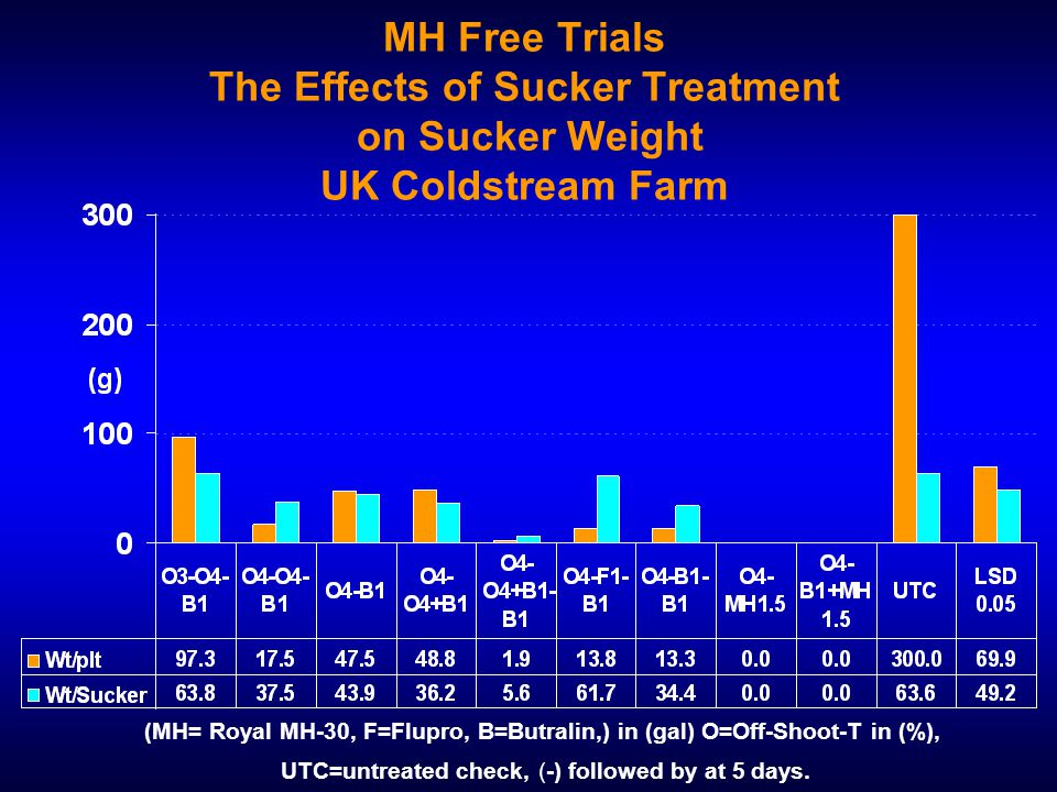 MH Free Trials The Effects of Sucker Treatment on Sucker Weight UK Coldstream Farm (MH= Royal MH-30, F=Flupro, B=Butralin,) in (gal) O=Off-Shoot-T in