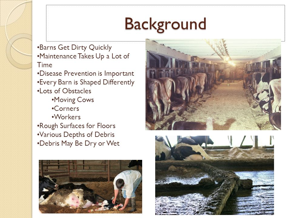Background Barns Get Dirty Quickly Maintenance Takes Up a Lot of Time Disease Prevention is Important Every Barn is Shaped Differently Lots of Obstacles Moving Cows Corners Workers Rough Surfaces for Floors Various Depths of Debris Debris May Be Dry or Wet