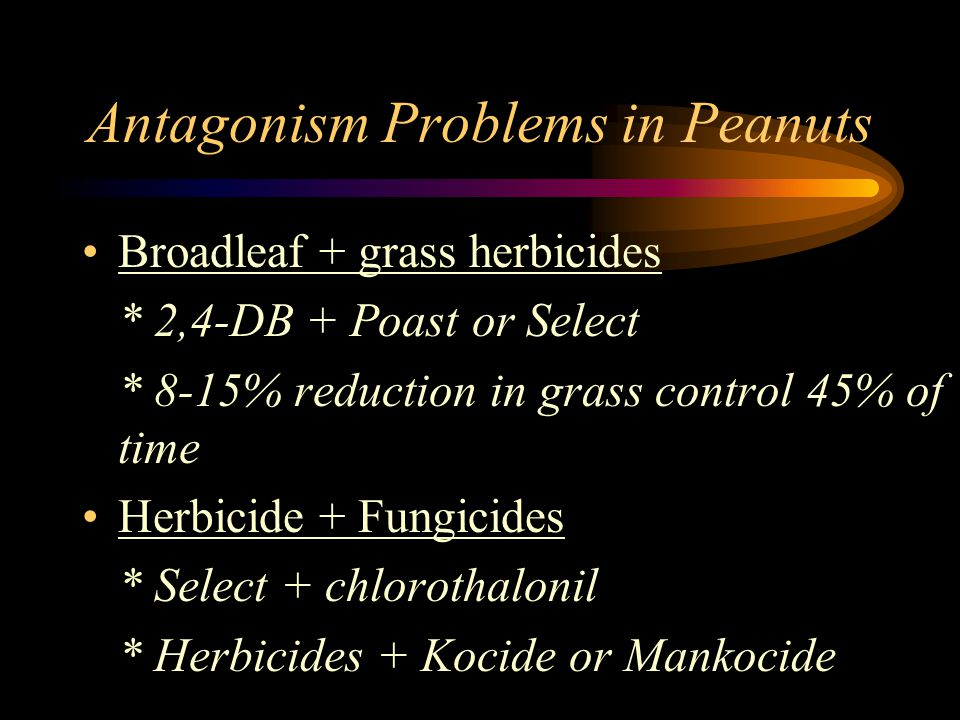 Antagonism Problems in Peanuts Broadleaf + grass herbicides * 2,4-DB + Poast or Select * 8-15% reduction in grass control 45% of time Herbicide + Fung