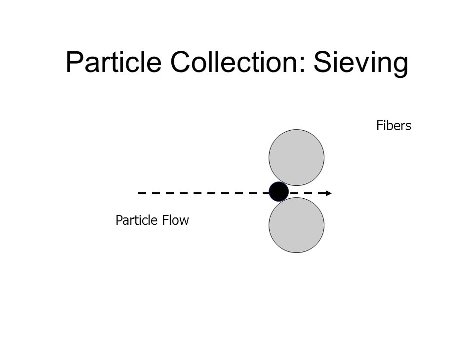 Particle Collection: Sieving Fibers Particle Flow