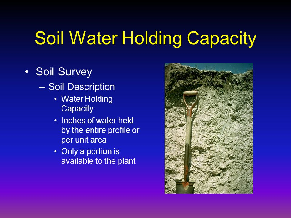 Soil Water Holding Capacity Soil Survey –Soil Description Water Holding Capacity Inches of water held by the entire profile or per unit area Only a portion is available to the plant