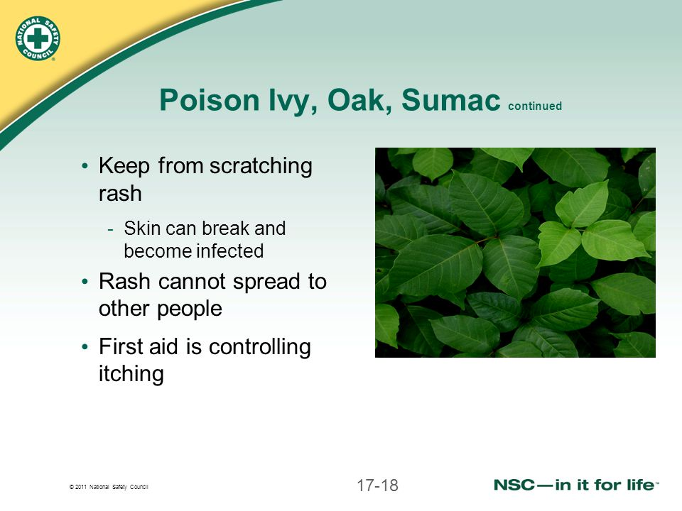 © 2011 National Safety Council Poison Ivy, Oak, Sumac continued Keep from scratching rash -Skin can break and become infected Rash cannot spread to other people First aid is controlling itching 17-18