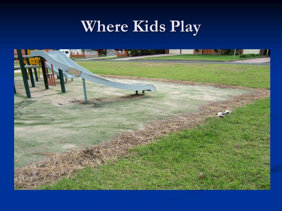 Where Kids Play