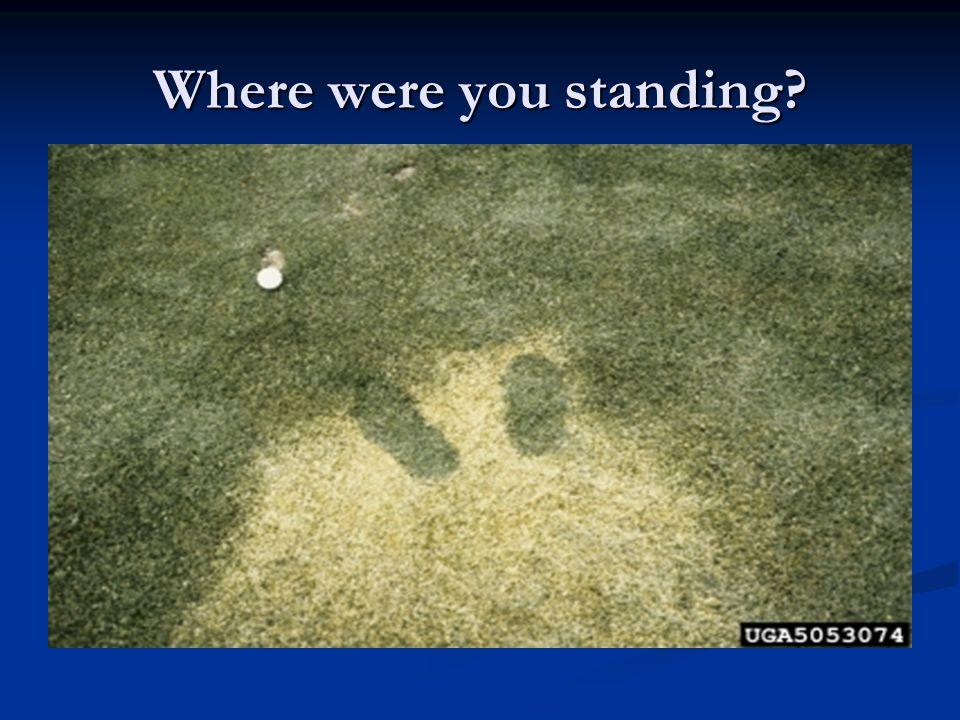 Where were you standing?