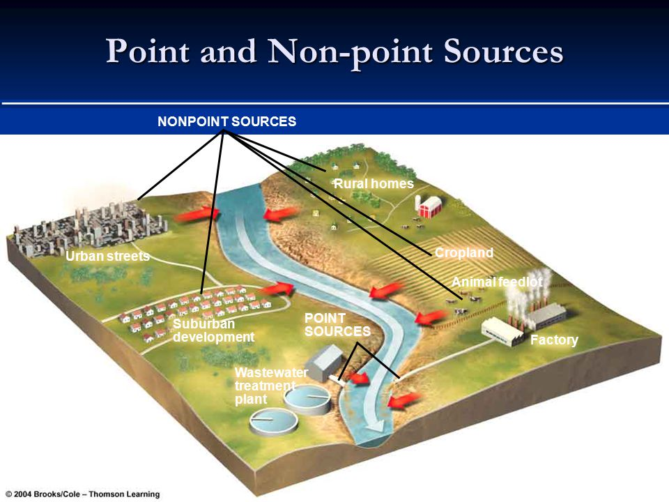 Point and Non-point Sources NONPOINT SOURCES Urban streets Suburban development Wastewater treatment plant Rural homes Cropland Factory Animal feedlot POINT SOURCES Fig.