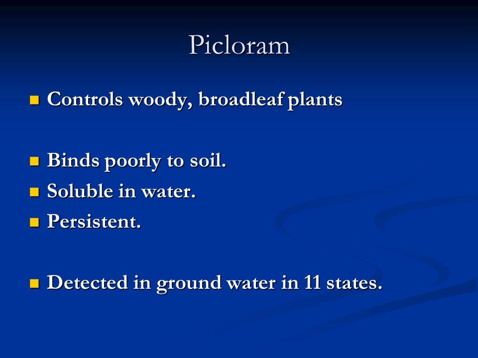 Picloram Controls woody, broadleaf plants Controls woody, broadleaf plants Binds poorly to soil.