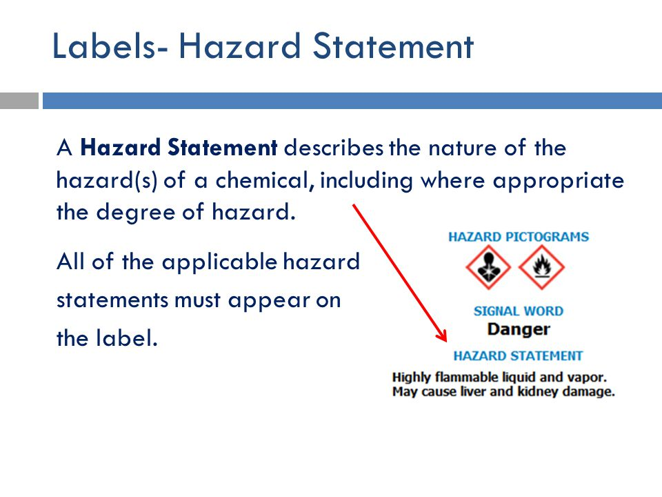Labels- Hazard Statement A Hazard Statement describes the nature of the hazard(s) of a chemical, including where appropriate the degree of hazard. All