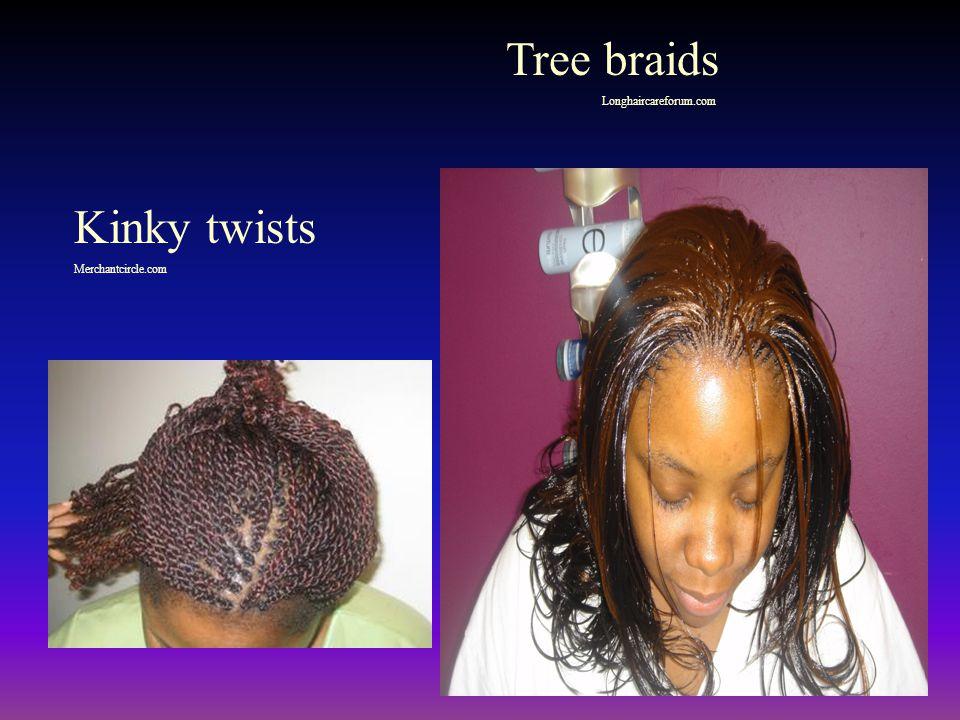 Tree braids Longhaircareforum.com Kinky twists Merchantcircle.com