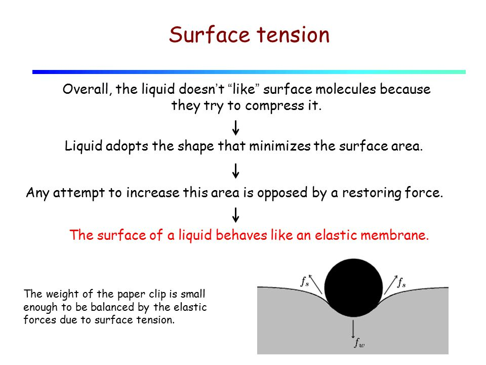 "Surface tension Overall, the liquid doesn't ""like"" surface molecules because they try to compress it. Liquid adopts the shape that minimizes the surfa"