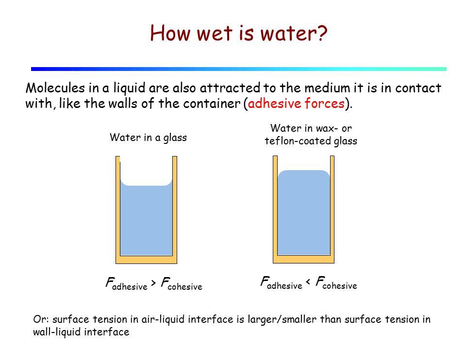 How wet is water.