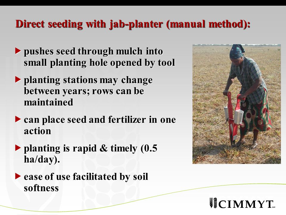 Direct seeding with jab-planter (manual method):  pushes seed through mulch into small planting hole opened by tool  planting stations may change between years; rows can be maintained  can place seed and fertilizer in one action  planting is rapid & timely (0.5 ha/day).