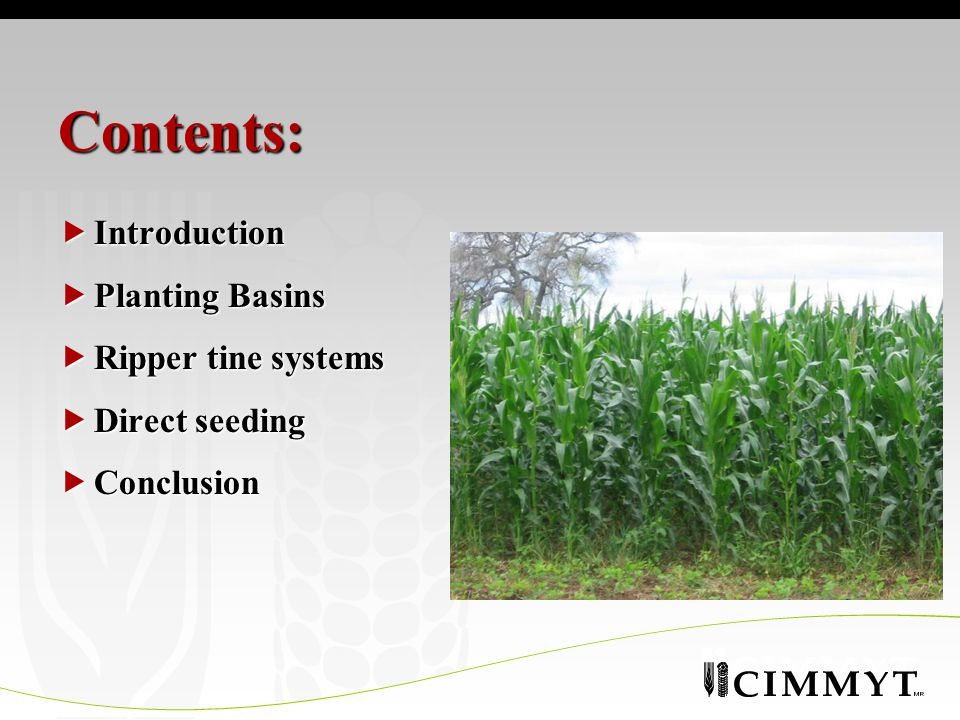 Contents:  Introduction  Planting Basins  Ripper tine systems  Direct seeding  Conclusion