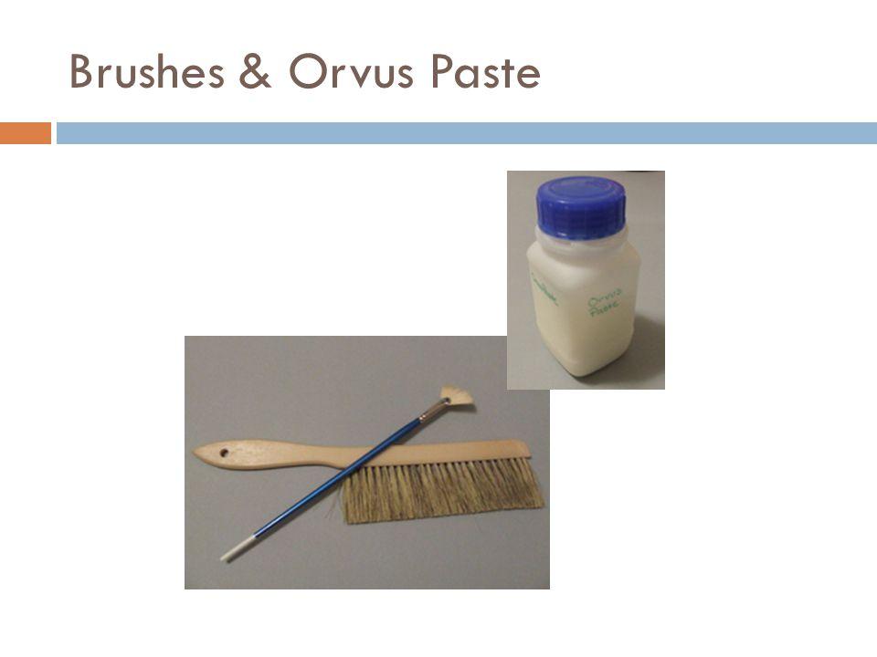 Brushes & Orvus Paste