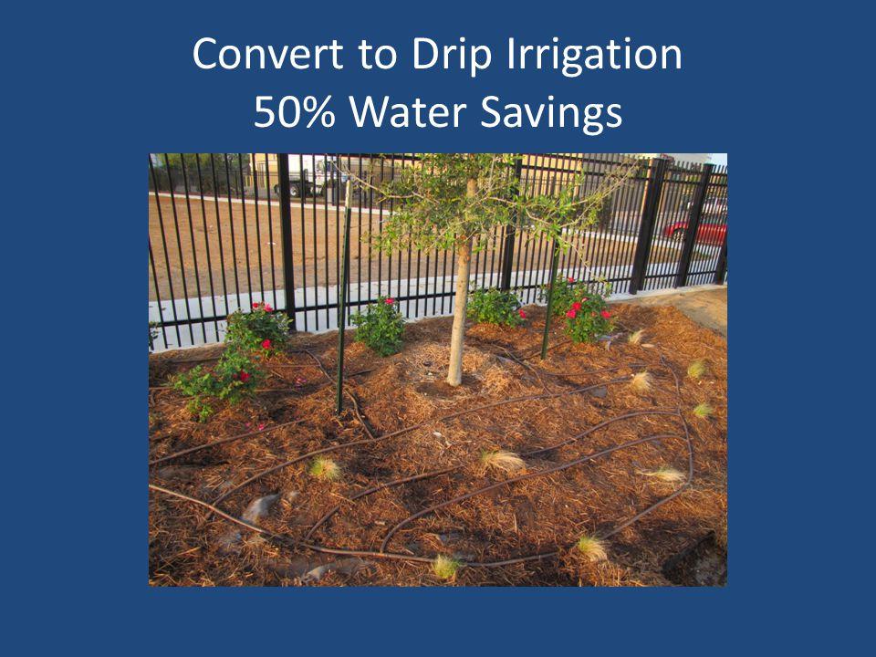 Convert to Drip Irrigation 50% Water Savings