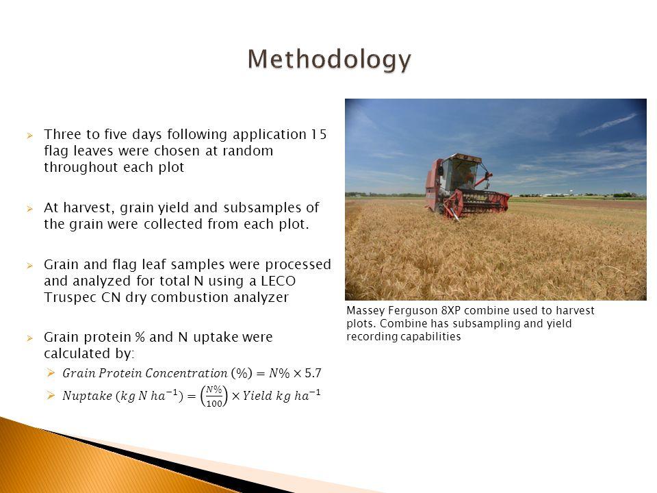 Massey Ferguson 8XP combine used to harvest plots.