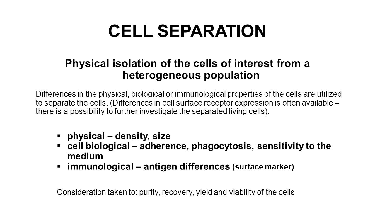 CELL SEPARATION Physical isolation of the cells of interest from a heterogeneous population Differences in the physical, biological or immunological properties of the cells are utilized to separate the cells.