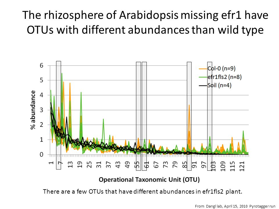 The rhizosphere of Arabidopsis missing efr1 have OTUs with different abundances than wild type There are a few OTUs that have different abundances in efr1fls2 plant.