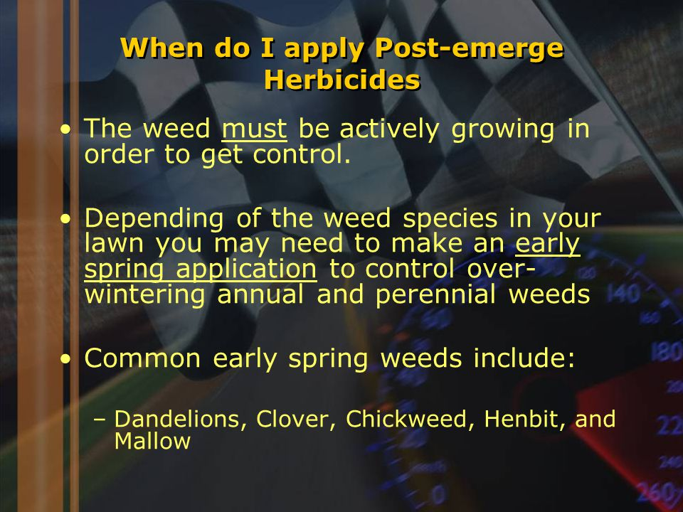 When do I apply Post-emerge Herbicides The weed must be actively growing in order to get control.