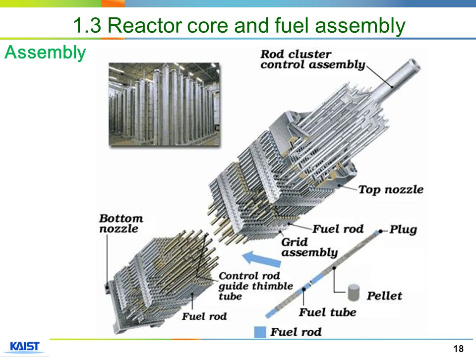 18 Assembly 1.3 Reactor core and fuel assembly