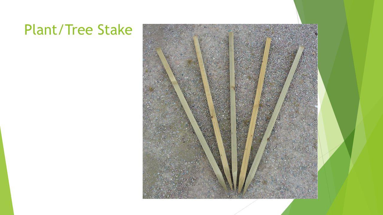 Plant/Tree Stake