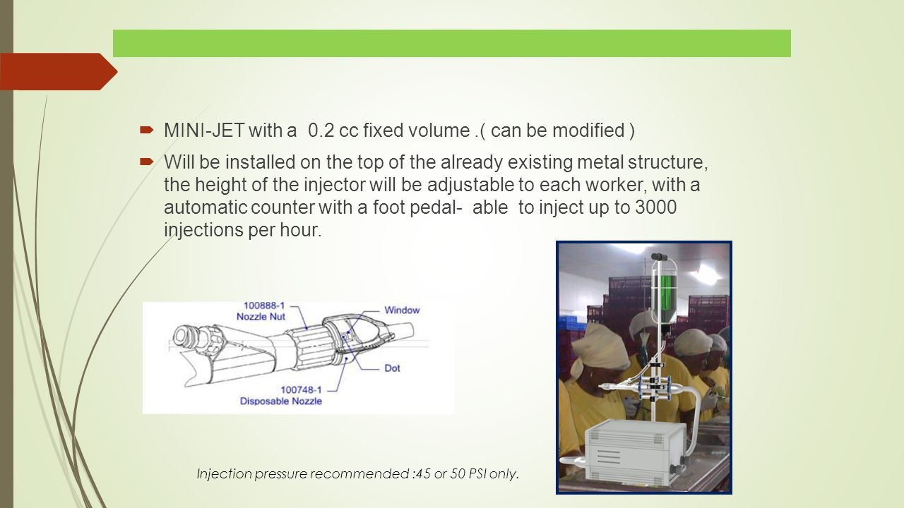  MINI-JET with a 0.2 cc fixed volume.( can be modified )  Will be installed on the top of the already existing metal structure, the height of the injector will be adjustable to each worker, with a automatic counter with a foot pedal- able to inject up to 3000 injections per hour.