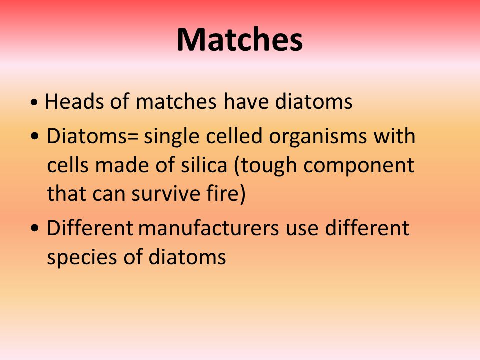 Matches Heads of matches have diatoms Diatoms= single celled organisms with cells made of silica (tough component that can survive fire) Different manufacturers use different species of diatoms