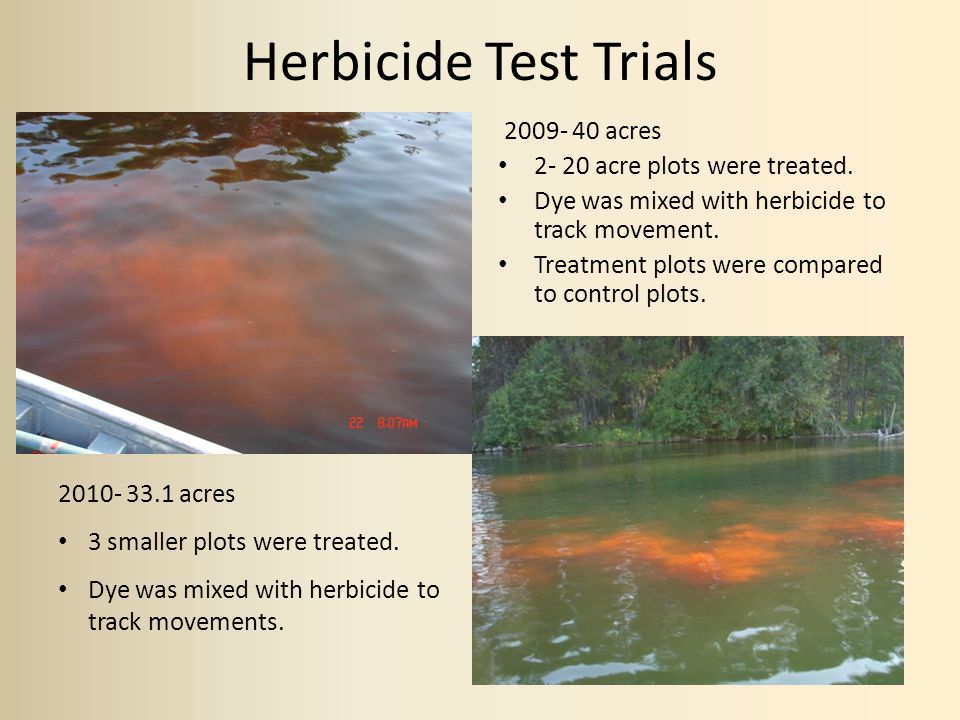 Herbicide Test Trials 2009- 40 acres 2- 20 acre plots were treated.