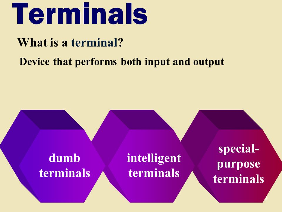 50 special- purpose terminals intelligent terminals Terminals What is a terminal.