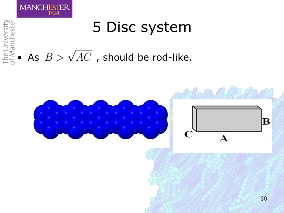 30 5 Disc system As, should be rod-like.