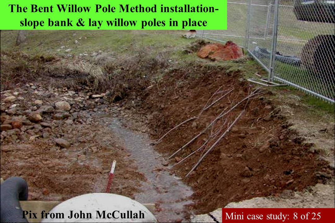 The Bent Willow Pole Method installation- slope bank & lay willow poles in place Pix from John McCullah Mini case study: 8 of 25
