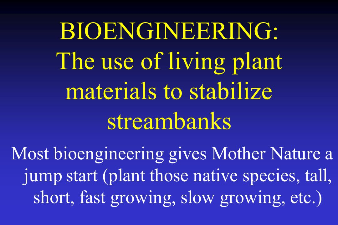BIOENGINEERING: The use of living plant materials to stabilize streambanks Most bioengineering gives Mother Nature a jump start (plant those native species, tall, short, fast growing, slow growing, etc.)