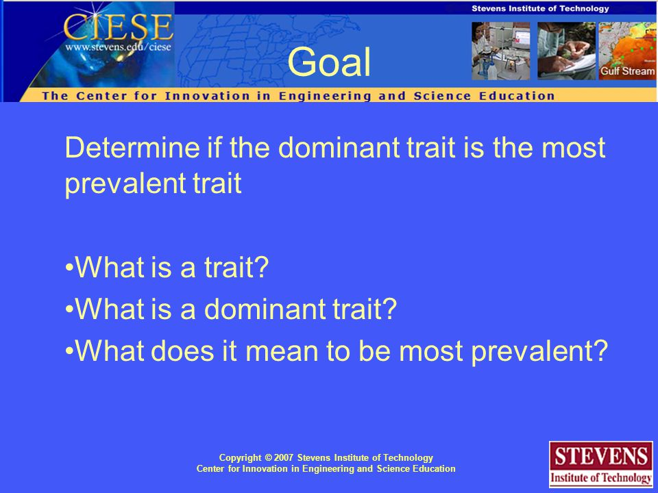 Goal Determine if the dominant trait is the most prevalent trait What is a trait.