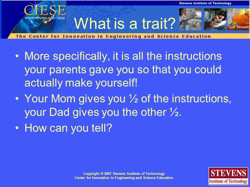 Copyright © 2007 Stevens Institute of Technology Center for Innovation in Engineering and Science Education What is a trait.