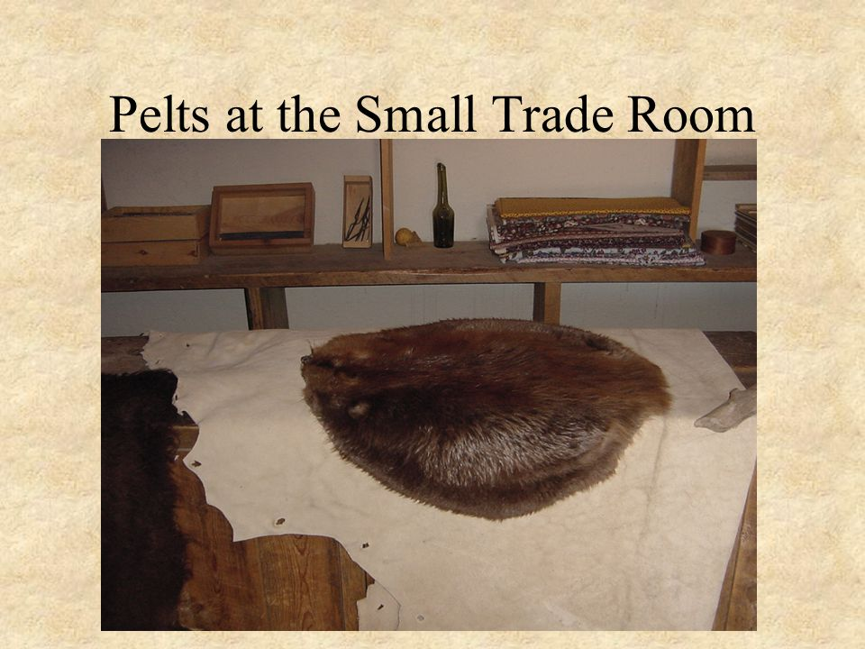 Pelts at the Small Trade Room