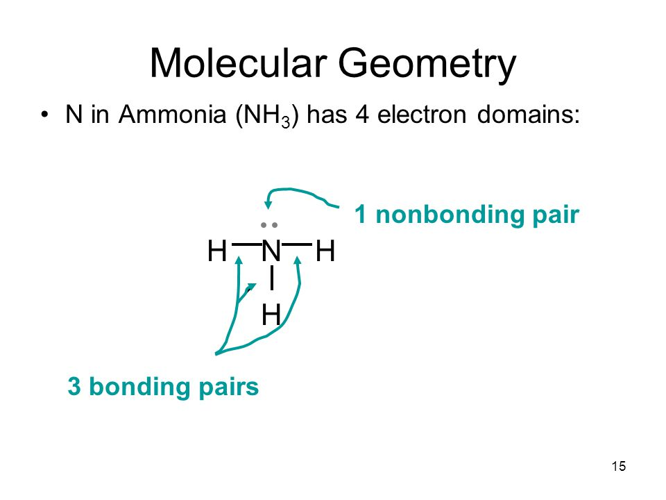 N in Ammonia (NH 3 ) has 4 electron domains: HNH H Molecular Geometry 3 bonding pairs 1 nonbonding pair 15